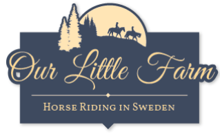 Our Little Farm Horse Riding in Sweden